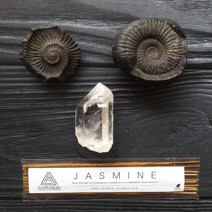 JASMINE (РАМАКРИШНА)