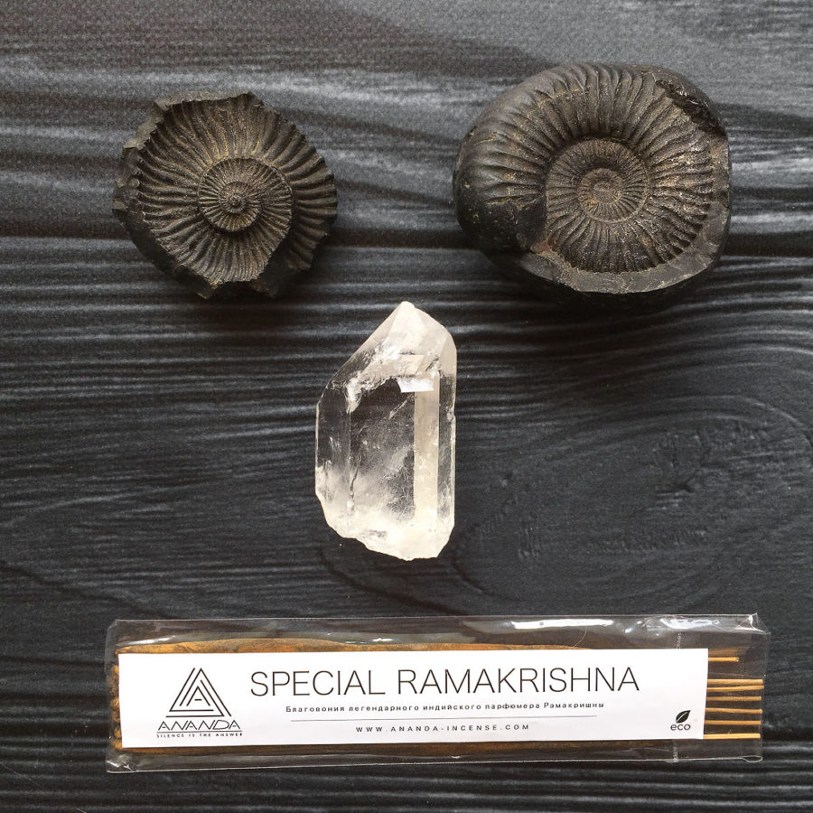 SPECIAL RAMAKRISHNA (РАМАКРИШНА)