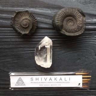 SHIVAKALI (РАМАКРИШНА)